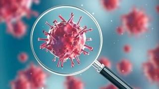 एक बिहानै थिपिए ३० जना कोरोना संक्रमित